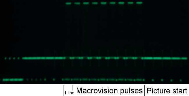 First few video lines containing Macrovision pulses